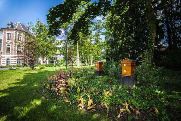 installation ruche chateau de beaulieu
