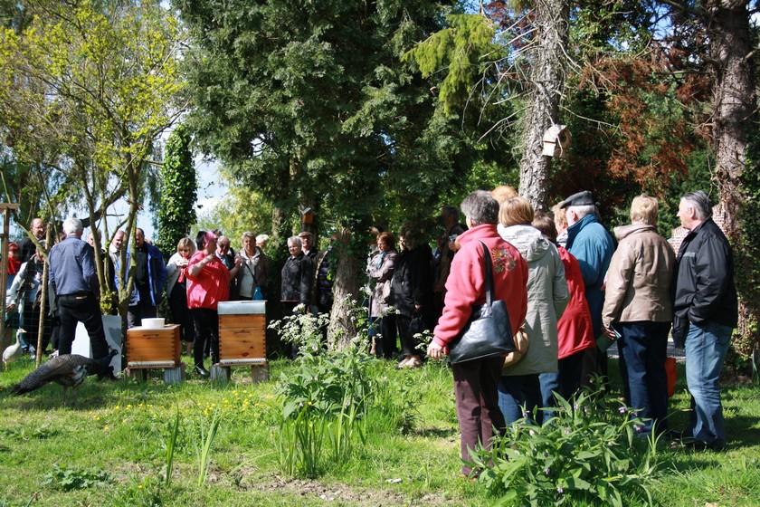 Visite du rucher de la riviere aux roseaux